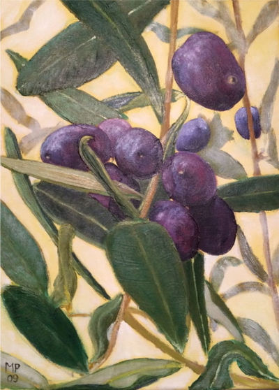 SOLD - Olives on tree -Oil on canvas